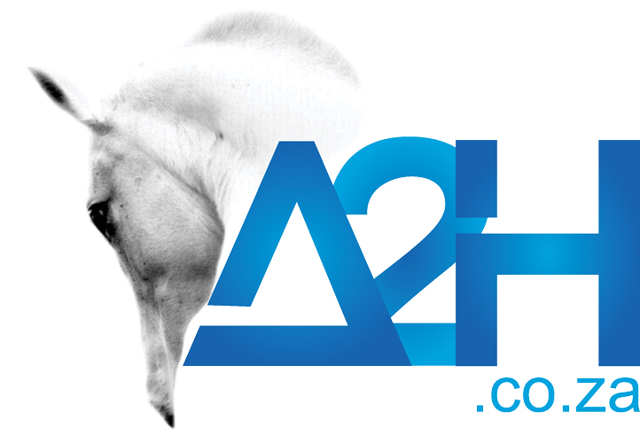A2H Consulting